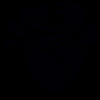 RoseVectorscopy3